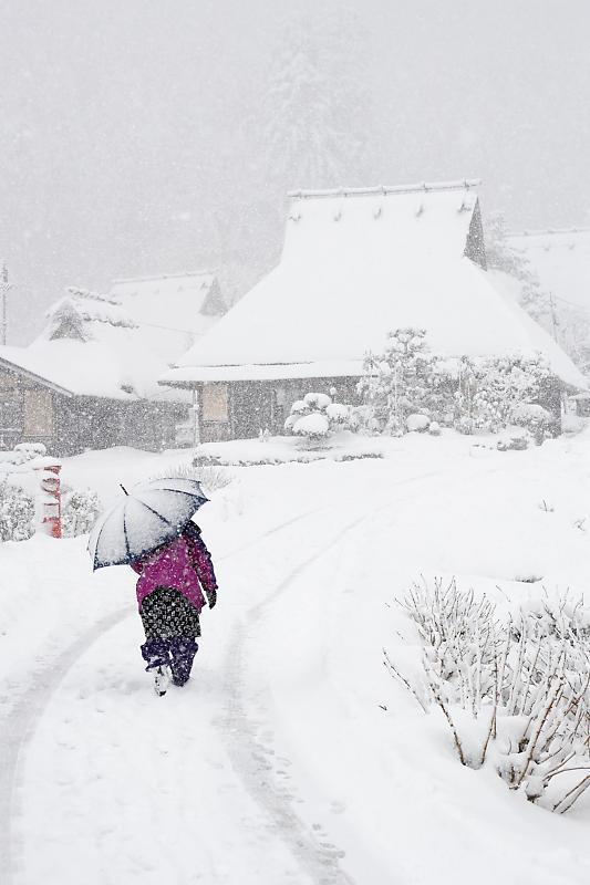 寒波到来!待望の雪景色@美山茅葺きの里 其の二_f0032011_16330749.jpg