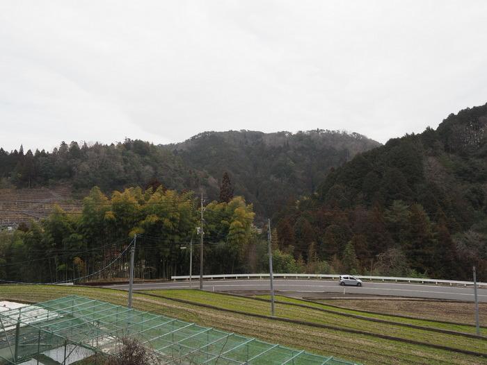 曇りの一日、夜に雨_c0116915_23451913.jpg