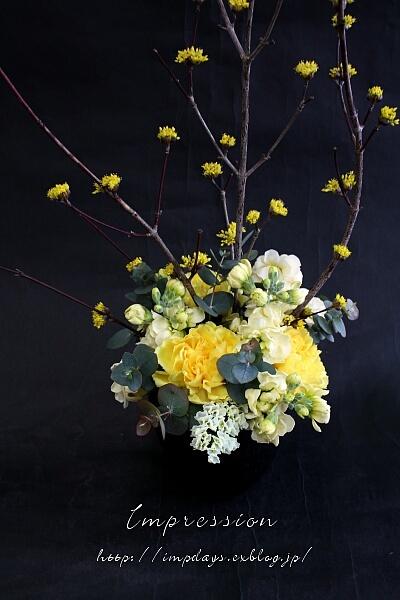 定期装花から スプレーストック:イエロースパーク_a0085317_17485693.jpg