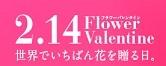 花の贈り物_e0294828_18303177.jpg