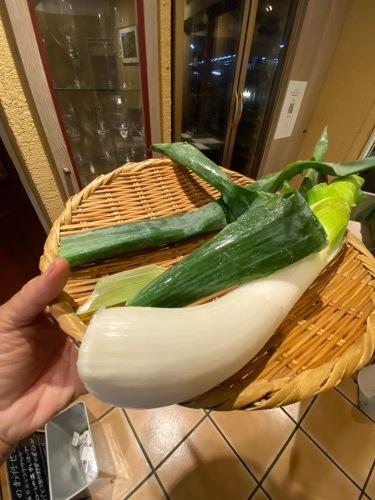全ての野菜育ち 春気温の中 トンネルを持ち上げ換気しています_c0222448_11410470.jpg