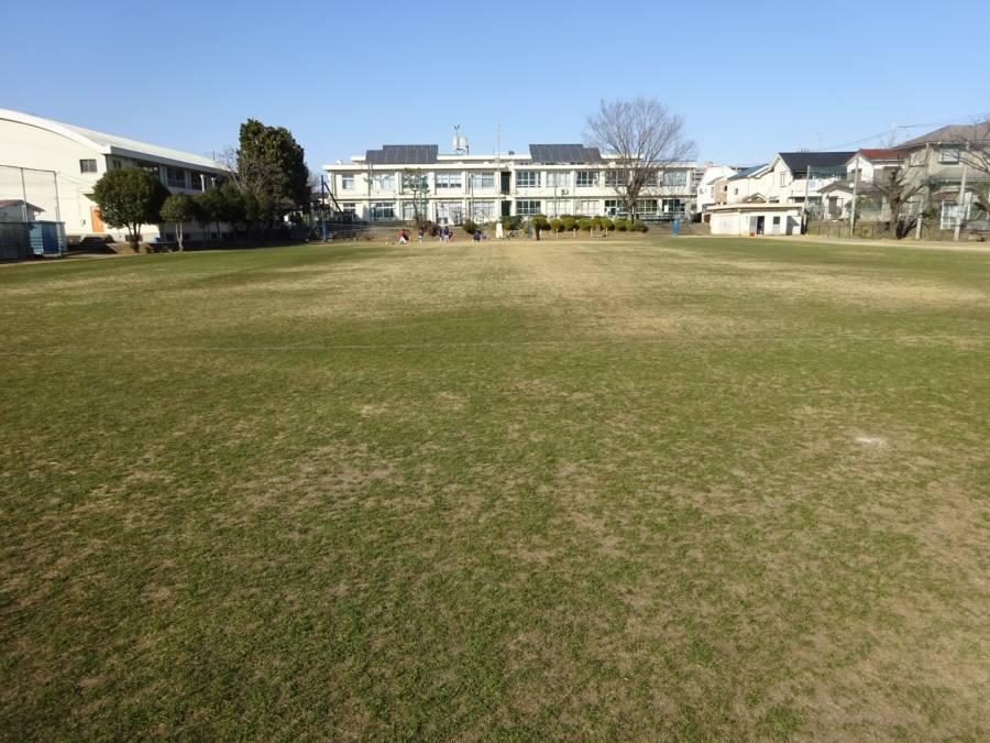2月の13小校庭芝生_f0059673_21550398.jpg