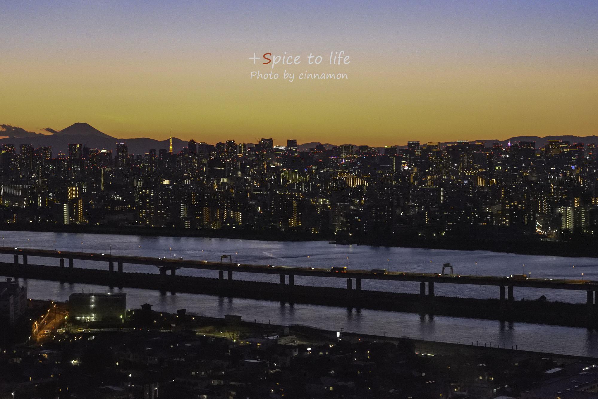 Tokyo 富士san SPOT #5-2_f0326278_17382447.jpg