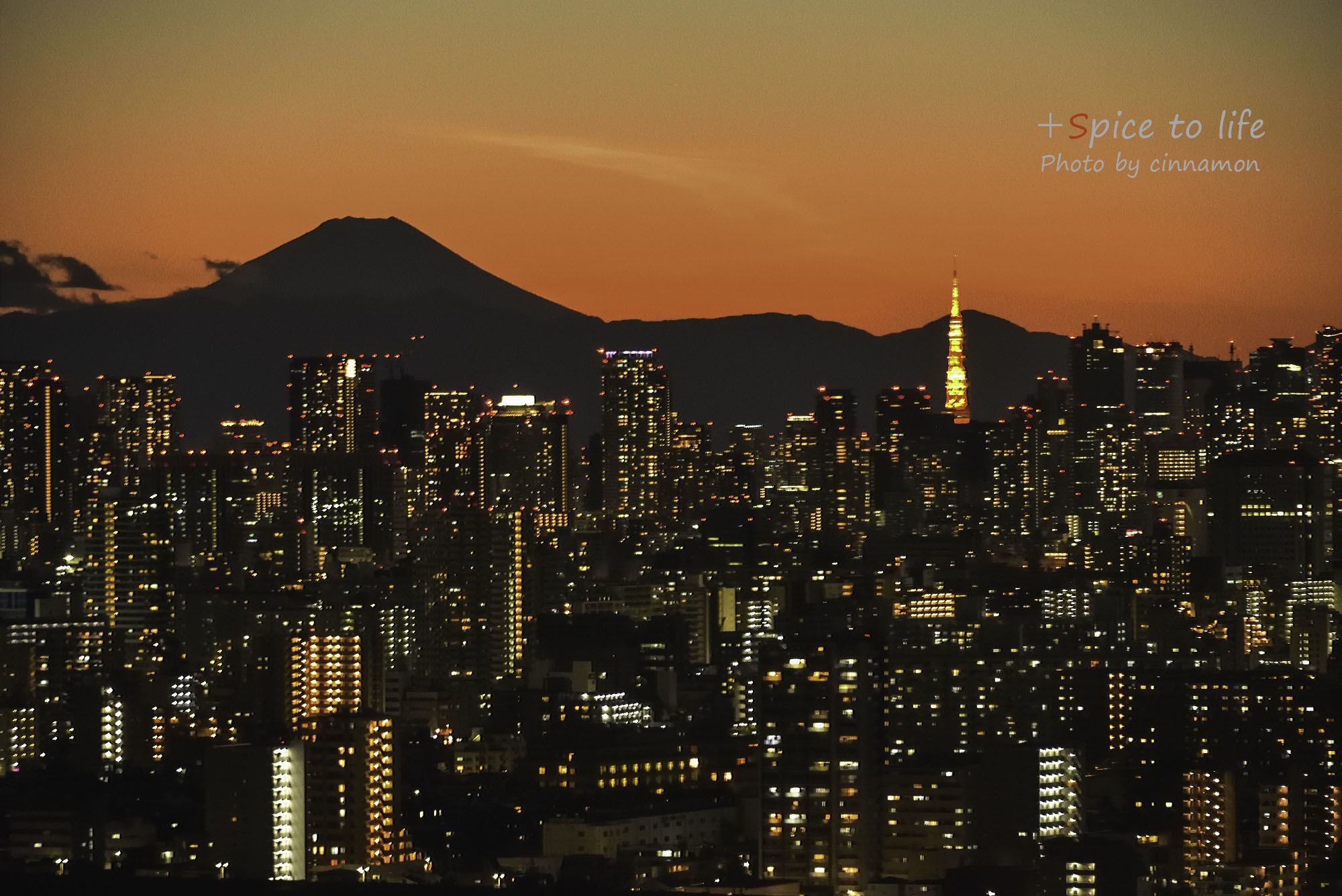 Tokyo 富士san SPOT #5-2_f0326278_17383507.jpg