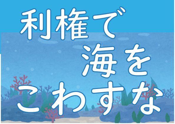 「設計変更」許さない!辺野古新基地つくらせない!キャンペーン_d0391192_11492732.jpg