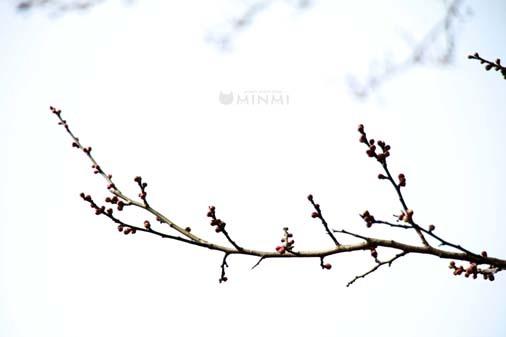 今日は暖かかったですね(*^▽^*)_c0140599_17561162.jpg