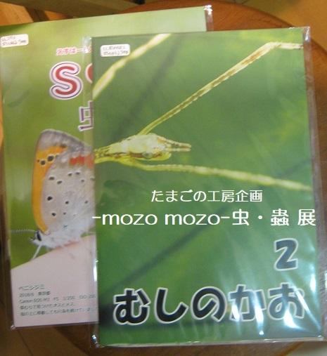 たまごの工房企画 -mozo mozo- 虫・蟲 展  その6_e0134502_14303346.jpg