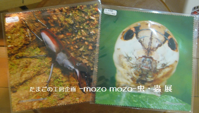 たまごの工房企画 -mozo mozo- 虫・蟲 展  その6_e0134502_14303724.jpg