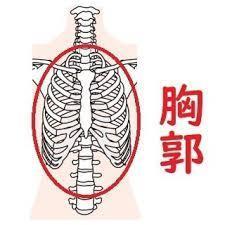 体を整えるために柔軟性を高める(準備運動①)_d0358103_13511596.jpg