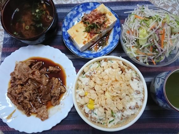 2/16 なっ豆腐丼、焼肉、プレーンヨーグルト_b0042308_19105359.jpg