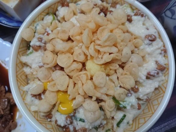 2/16 なっ豆腐丼、焼肉、プレーンヨーグルト_b0042308_19111275.jpg