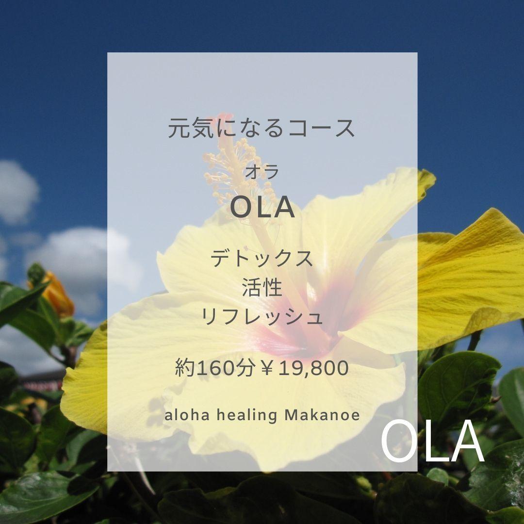 new★元気になる【OLA】オラコース_a0293109_21450158.jpg