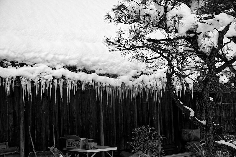 再びの雪景色!@久多_f0032011_16364850.jpg