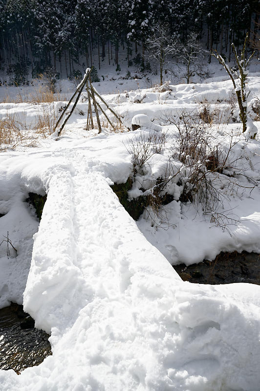 再びの雪景色!@久多_f0032011_16364894.jpg
