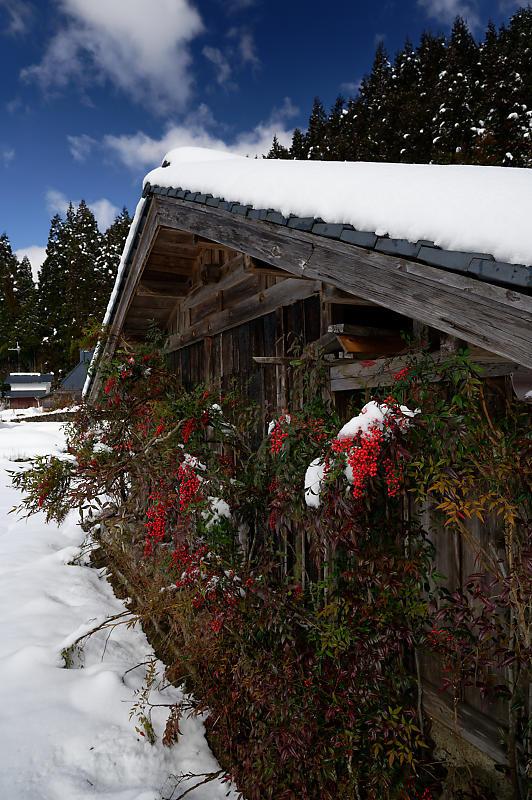 再びの雪景色!@久多_f0032011_16385540.jpg