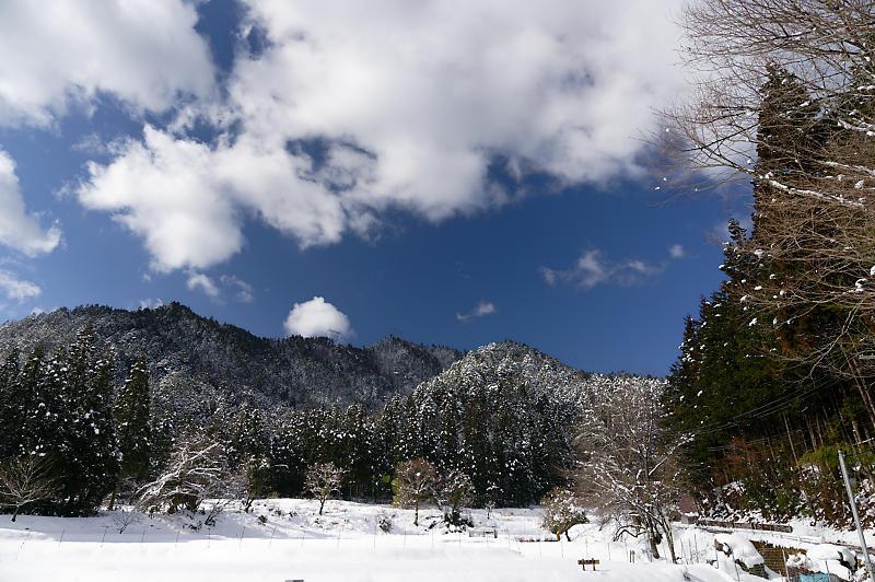 再びの雪景色!@久多_f0032011_16385633.jpg