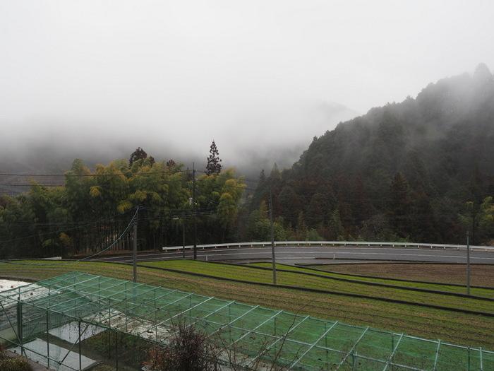雨のち曇り(山に霧)_c0116915_23181775.jpg