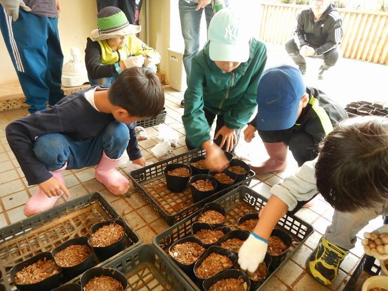 2019年度 第8回くんじゃん山学校  どんぐりの森を育てよう!_f0121321_18204155.jpg