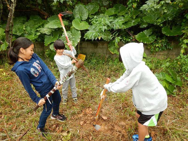 2019年度 第8回くんじゃん山学校  どんぐりの森を育てよう!_f0121321_18240089.jpg
