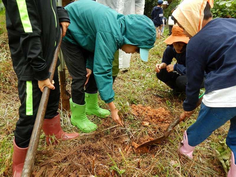 2019年度 第8回くんじゃん山学校  どんぐりの森を育てよう!_f0121321_18242115.jpg