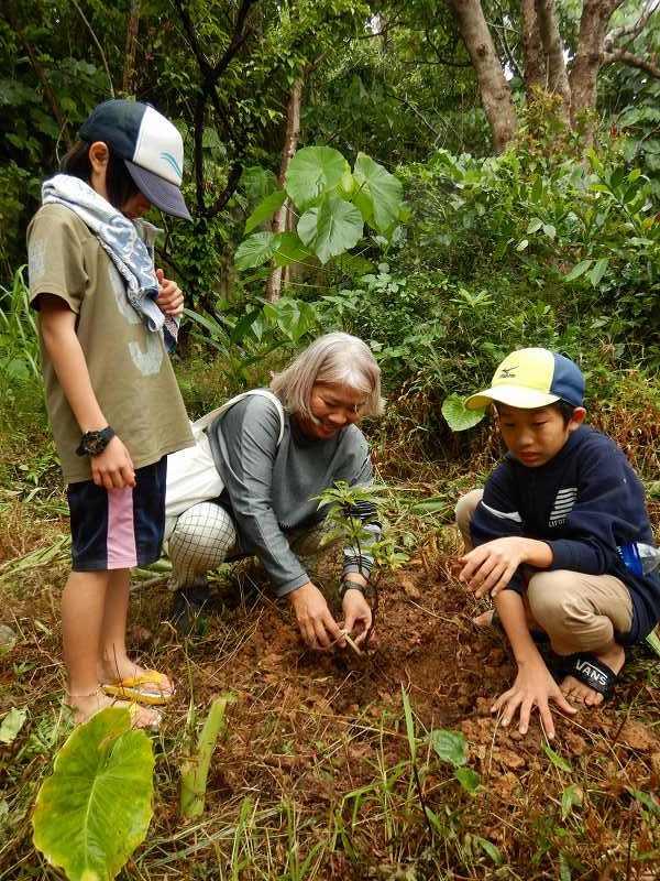 2019年度 第8回くんじゃん山学校  どんぐりの森を育てよう!_f0121321_18251523.jpg