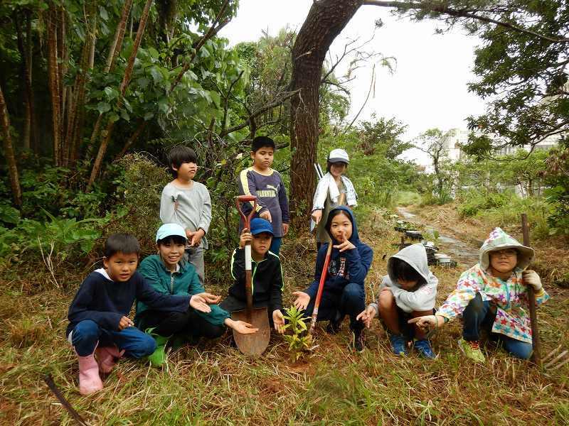 2019年度 第8回くんじゃん山学校  どんぐりの森を育てよう!_f0121321_18253212.jpg
