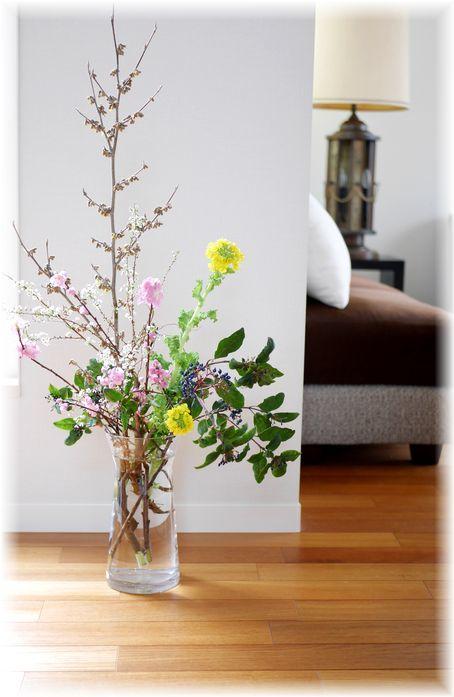 今日のお花と私の雛人形_f0143227_14304588.jpg
