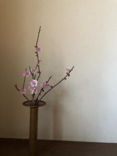 春の兆し_a0197730_09200291.jpeg