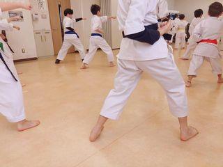 日曜空手 屯田教室 新琴似・新川教室_c0118332_13050323.jpg