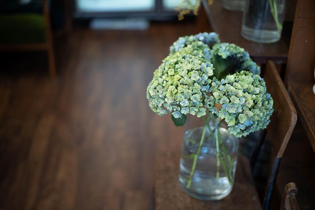 scene1633:増え続ける花瓶。水替えが大変な日常に。_e0253132_22455948.jpg