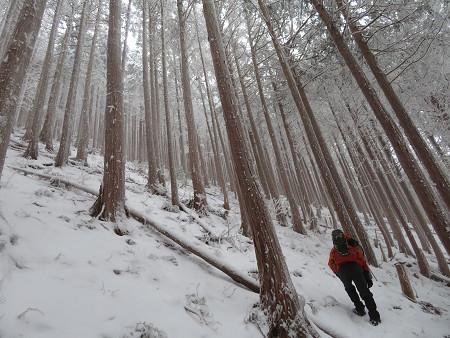 紺碧なお空の下で真っ白な雪山を楽しむ~【台高】2/11_d0387443_14130016.jpg