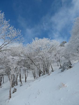 紺碧なお空の下で真っ白な雪山を楽しむ~【台高】2/11_d0387443_14130047.jpg