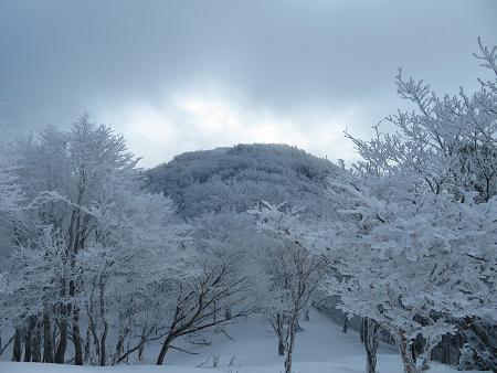 紺碧なお空の下で真っ白な雪山を楽しむ~【台高】2/11_d0387443_14130827.jpg