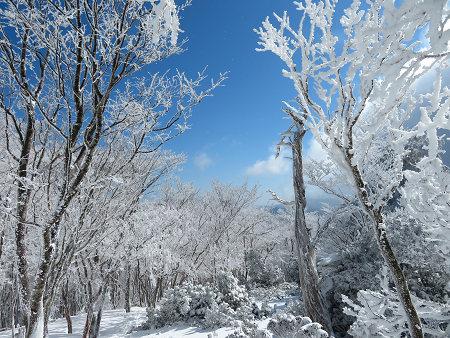 紺碧なお空の下で真っ白な雪山を楽しむ~【台高】2/11_d0387443_14131408.jpg