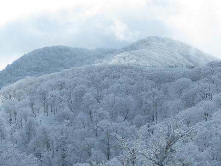 紺碧なお空の下で真っ白な雪山を楽しむ~【台高】2/11_d0387443_14131507.jpg