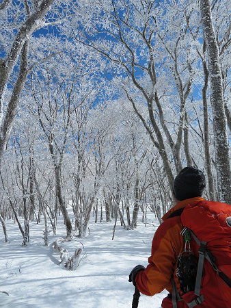紺碧なお空の下で真っ白な雪山を楽しむ~【台高】2/11_d0387443_14131562.jpg