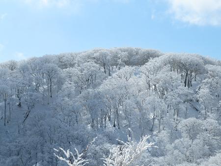 紺碧なお空の下で真っ白な雪山を楽しむ~【台高】2/11_d0387443_14132146.jpg
