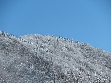 紺碧なお空の下で真っ白な雪山を楽しむ~【台高】2/11_d0387443_14132165.jpg