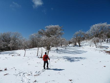 紺碧なお空の下で真っ白な雪山を楽しむ~【台高】2/11_d0387443_14132172.jpg