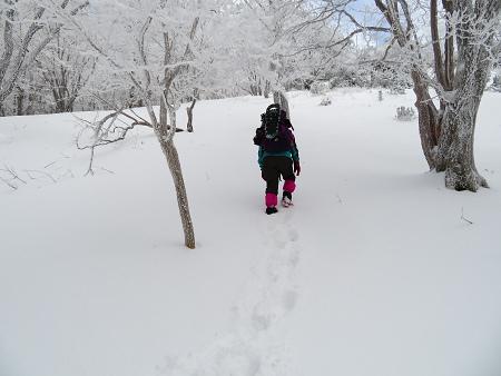 紺碧なお空の下で真っ白な雪山を楽しむ~【台高】2/11_d0387443_14132756.jpg