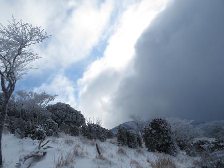 紺碧なお空の下で真っ白な雪山を楽しむ~【台高】2/11_d0387443_14132795.jpg