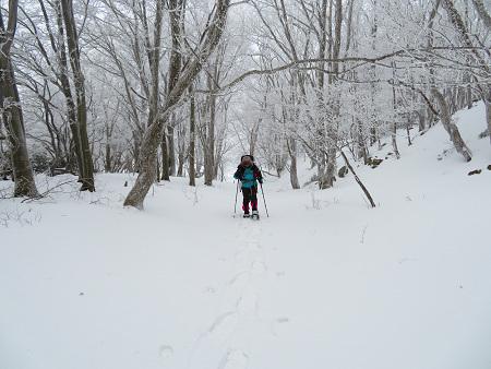 紺碧なお空の下で真っ白な雪山を楽しむ~【台高】2/11_d0387443_14133242.jpg