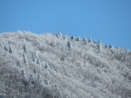 紺碧なお空の下で真っ白な雪山を楽しむ~【台高】2/11_d0387443_14313780.jpg