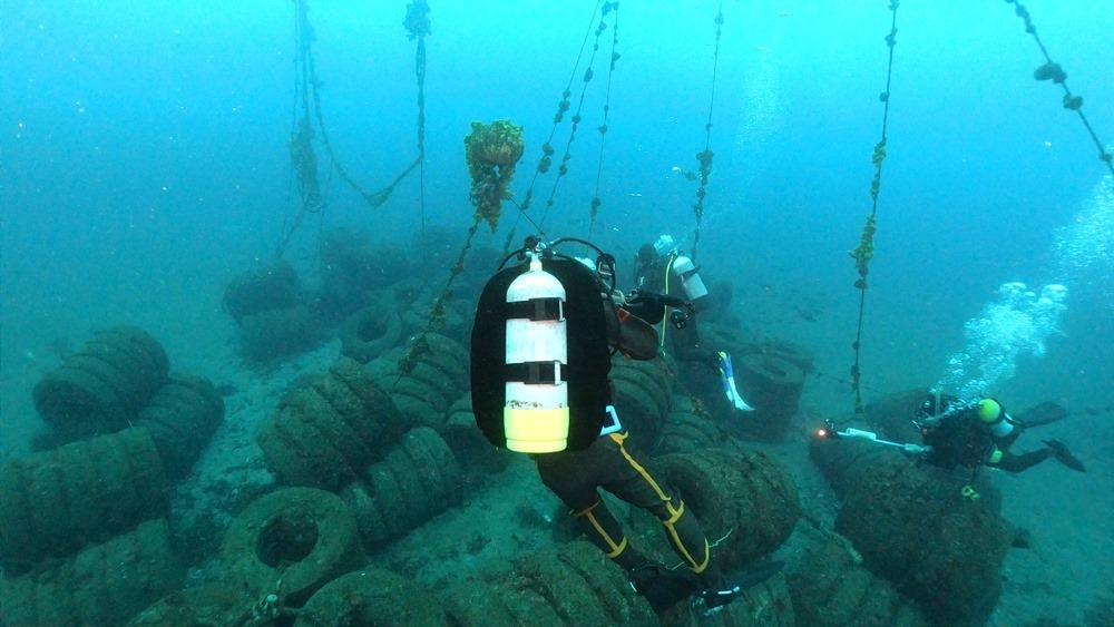 0216  2月14日 第35回 人工魚礁研究会 波左間_b0075059_10073448.jpg