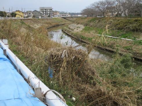 水害対策の今後は_b0227068_09154124.jpg