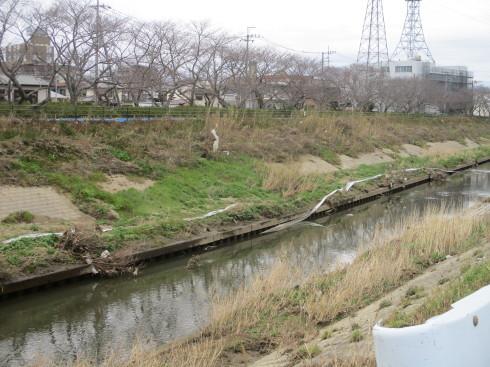 水害対策の今後は_b0227068_09221903.jpg