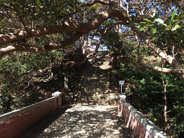ついに猿田神社へ。森の力と、独特で不思議な世界・・・ (2/11)_b0006870_739467.jpg
