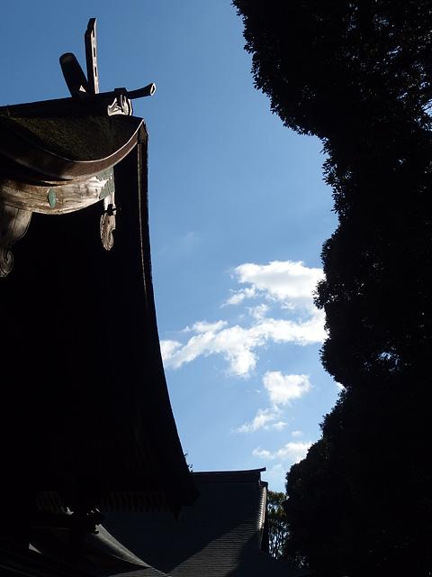 ついに猿田神社へ。森の力と、独特で不思議な世界・・・ (2/11)_b0006870_7394778.jpg