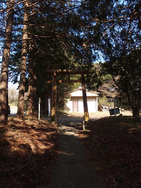 ついに猿田神社へ。森の力と、独特で不思議な世界・・・ (2/11)_b0006870_7421575.jpg