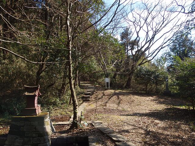 ついに猿田神社へ。森の力と、独特で不思議な世界・・・ (2/11)_b0006870_7425100.jpg